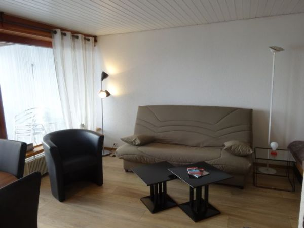 Grand studio lumineux balcon sud